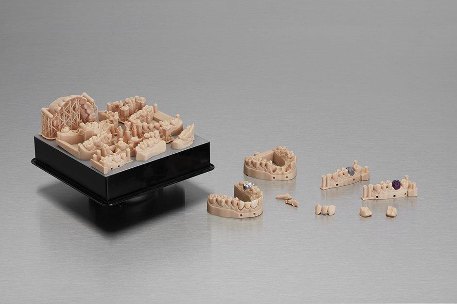 form3レジン 歯科模型